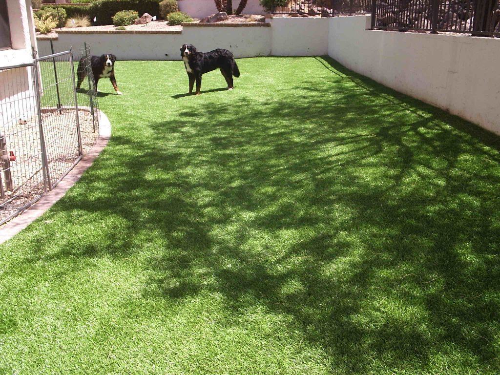 Synthetic Lawn Pet Turf Company Chula Vista, Best Artificial Pet Turf Pricing