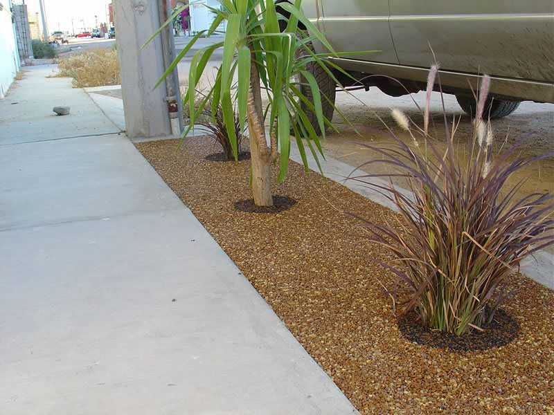 Porous Tree Well Installation Services Chula Vista, Tree Well Maintenance and Cleaning